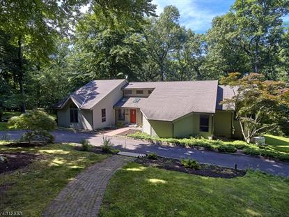 238 HAMDEN RIVER RD  Franklin Twp, NJ MLS# 3483094
