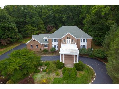 11 BEACON HILL DR , Chester, NJ