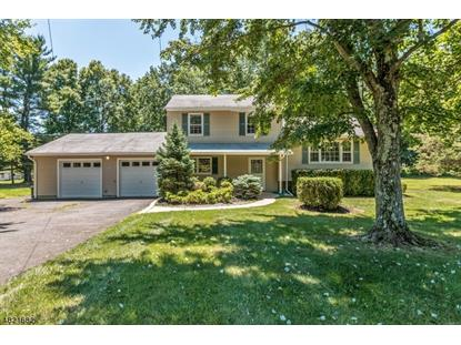 49 WOODLAWN AVE , Bridgewater, NJ