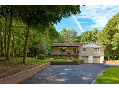 18 PLEASANT HILL RD , Randolph, NJ