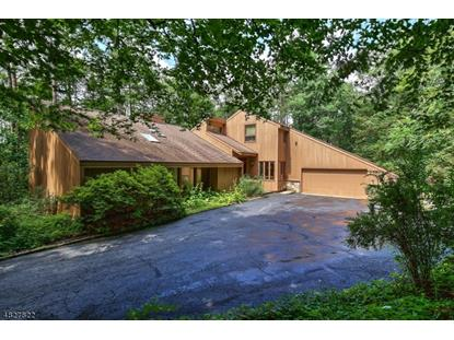 21 SADDLE HILL RD  Mendham, NJ MLS# 3493069