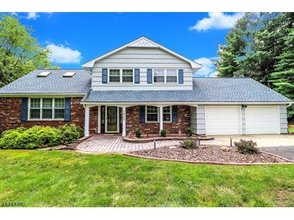1953 HOLLAND BROOK RD West  Branchburg, NJ MLS# 3496412