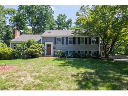 381 WALNUT ST  Livingston, NJ MLS# 3496505