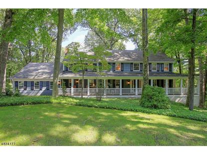 9 SUMMIT RD  Mendham Twp, NJ MLS# 3498597