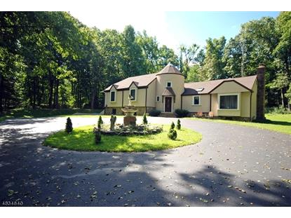 127 CHERRYVILLE HOLLOW RD  Raritan Township, NJ MLS# 3498876