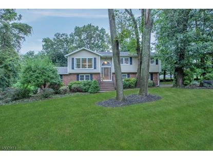 31 MARY DR  Towaco, NJ MLS# 3502081