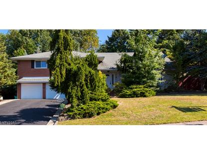 96 VINCENT DR  Clifton, NJ MLS# 3502844