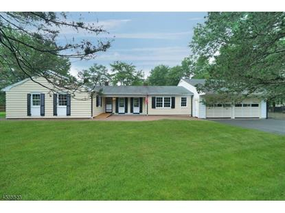 110 SOMERSET TER  Bedminster, NJ MLS# 3502980