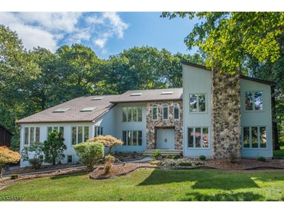 5 PINNACLE PT , Randolph, NJ