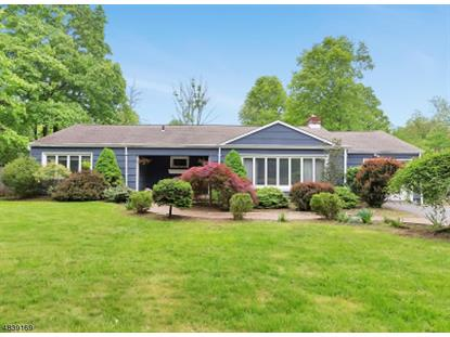 393 MT AIRY RD  Bernards Township, NJ MLS# 3503143