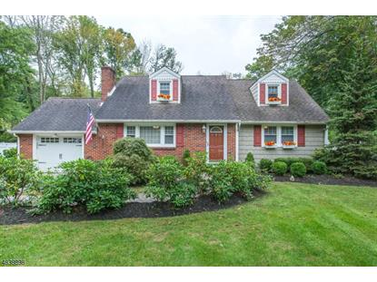 91 TAYLORTOWN RD  Montville Township, NJ MLS# 3503501