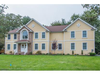 12 AIDA CT  Parsippany-Troy Hills Twp., NJ MLS# 3503946
