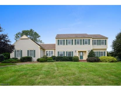14 Farmstead Court , Montgomery, NJ
