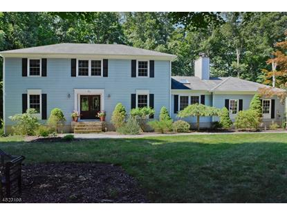 21 POWHATATAN WAY  Mount Olive, NJ MLS# 3505782