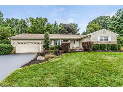 3 CHAPEL VIEW DRIVE  Raritan Township, NJ MLS# 3507347