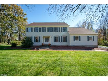 41 COREY RD  Mount Olive, NJ MLS# 3509304