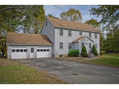 13 Greenhut Ave  Randolph, NJ MLS# 3509630