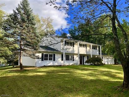 19 Woodbine Trl  Parsippany-Troy Hills Twp., NJ MLS# 3509845