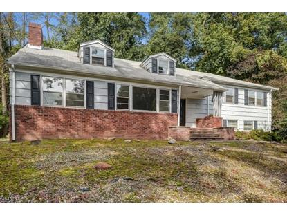 974 CHIMNEY RIDGE DR  Springfield, NJ MLS# 3509927