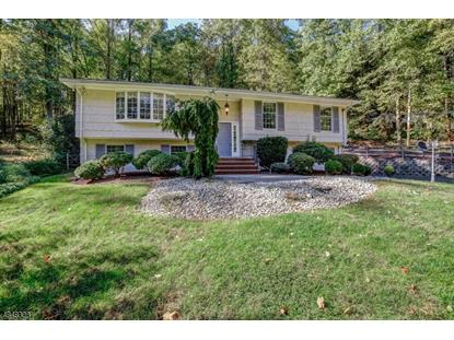 35 BAILEY HOLLOW RD  Morris Township, NJ MLS# 3511801