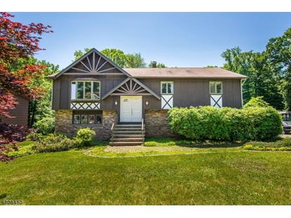 8 ALPINE DR  Randolph, NJ MLS# 3511971