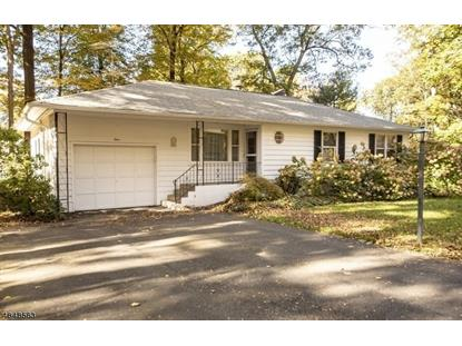 4 BIRCH RD  Byram Township, NJ MLS# 3511995