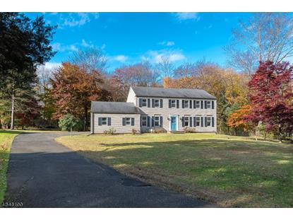 12 DEAN RD  Mendham, NJ MLS# 3512926