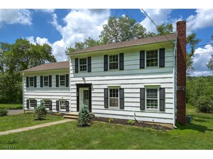518 MINE BROOK RD  Bernards Township, NJ MLS# 3514936