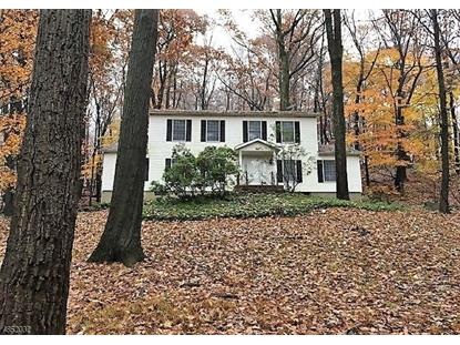 186 OLD TURNPIKE RD  Tewksbury Township, NJ MLS# 3515623