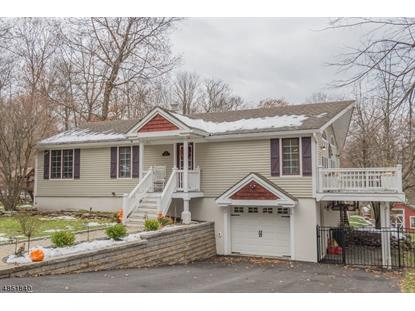 161 DECKERTOWN TNPK  Montague Township, NJ MLS# 3515960