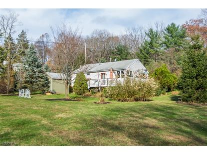 3 Herbann Lane  Mendham Twp, NJ MLS# 3516267
