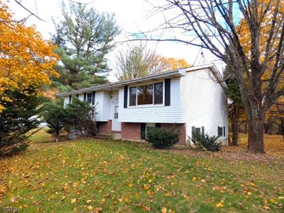 3 ROY ACE ST  Knowlton Twp., NJ MLS# 3516486