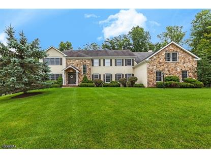 3 ROCKWELL CT  Mendham, NJ MLS# 3516506