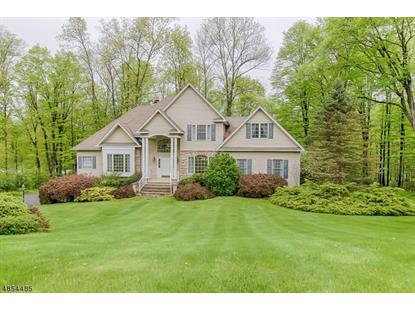2 HIDDEN VALLEY RD  Andover, NJ MLS# 3517519