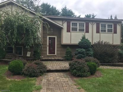 506 HAMILTON DR  Hackettstown, NJ MLS# 3517911