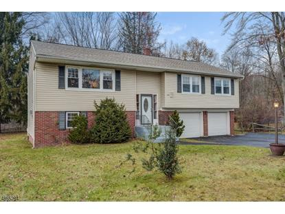 56 WHITE OAK CT  Parsippany-Troy Hills Twp., NJ MLS# 3518309