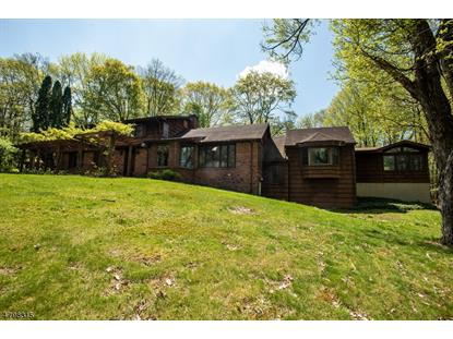 110 BIRCH DR  Fredon Township, NJ MLS# 3518888