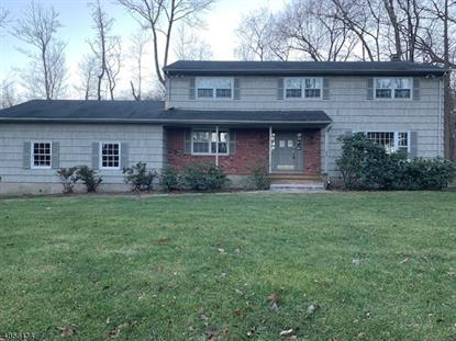 596 HIGH MOUNTAIN RD  Franklin Lakes, NJ MLS# 3519024