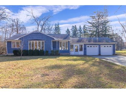 9 ADAMS PL  Mendham, NJ MLS# 3519414
