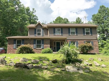 83 MINE HILL RD  Washington Twp., NJ MLS# 3520040