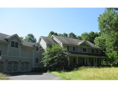 3 EVERGREEN LN  Lebanon Twp, NJ MLS# 3520095
