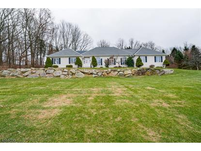 10 STARRETT CT  Sparta, NJ MLS# 3520795