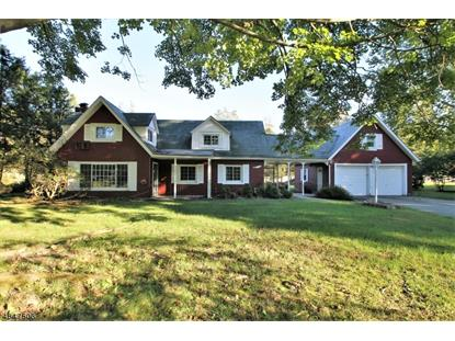 125 MINE HILL RD  Mount Olive, NJ MLS# 3521935
