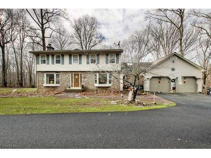 31 David Post Road  Clinton Twp, NJ MLS# 3522402