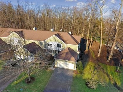 6 NOTTINGHAM CT  Morris Township, NJ MLS# 3522740