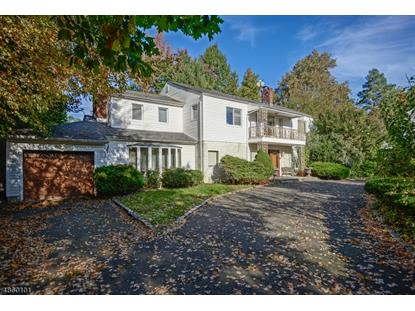 840 MOUNTAIN AVE  Springfield, NJ MLS# 3522830