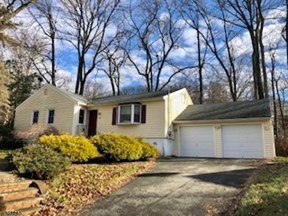 540 OGDEN RD  Roxbury Twp, NJ MLS# 3523594