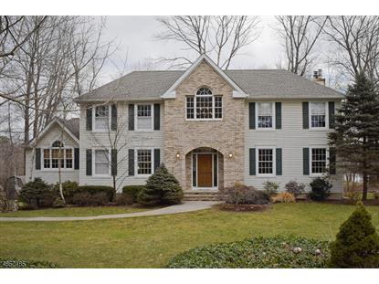 33 MORNING STAR DR  Sparta, NJ MLS# 3524375