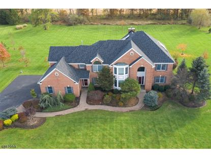 10 JACOBUS LN  Readington Twp, NJ MLS# 3528982
