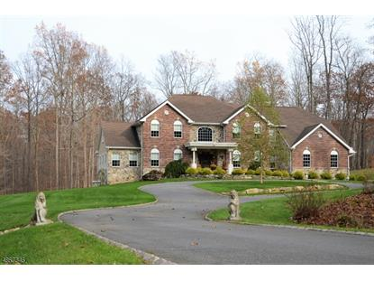 12 LOURDES CT  Andover, NJ MLS# 3529625